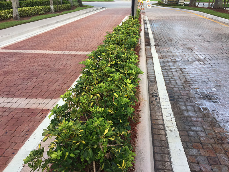 Currently, many of properties across the country are now faced with the dilemma of how to restore the pavers without having to replace them.